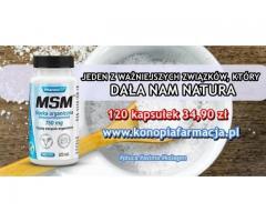 Płuca astma ziołowe tabletki bez recepty